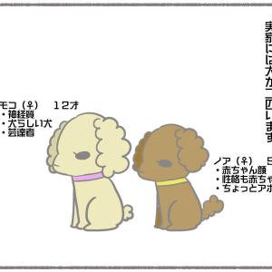 110))初ママ方じーじばーばの家