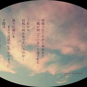 ・・* 写真詩 vol. 8 *・・