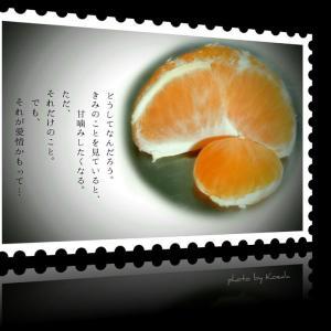 ・・* 写真詩 vol. 21 *・・