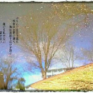 ・・* 写真詩 vol. 23 *・・