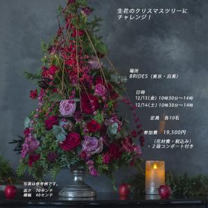 生花のクリスマスツリーレッスン&パーティー開催します!