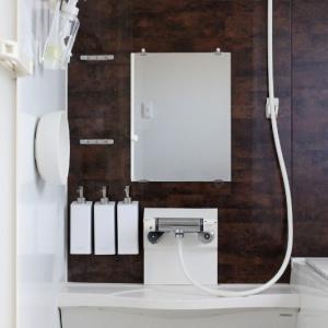 セリアと便利グッズが大正解!1つ3役の優秀アイテムでお風呂の掃除がラクに&衛生的になりました!