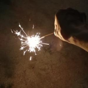 今年、最初で最後の花火