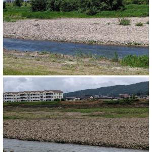 河川整備工事でオオヨシキリの鳴き声が聞こえなくなった