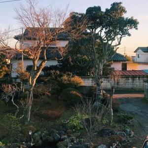 ブラジル娘2人の日本旅2019-2020 12