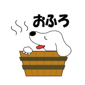 くぅたのお風呂タイム