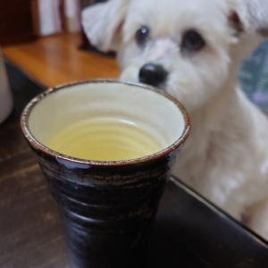 地元産の美味しいそば茶で・・・乾杯!