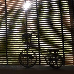 可愛い自転車♪