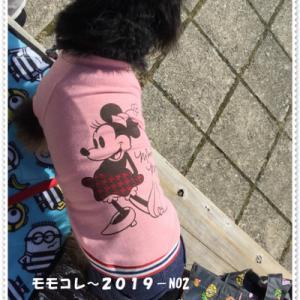 ☆モモコレ~2019・NO2