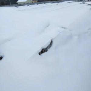 購入した道具を使用して雪下ろしに行ってきました。