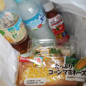真夏の昼飯 スーパー編