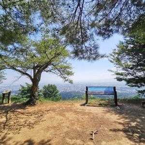直江津 春日山城に登りました