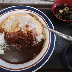 名代富士そば アパ社長カレーかつ丼