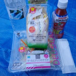 ファミリーマート ケールとナッツのサラダ&サンドイッチ