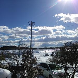 雪景色とお昼寝ニャンズ♪