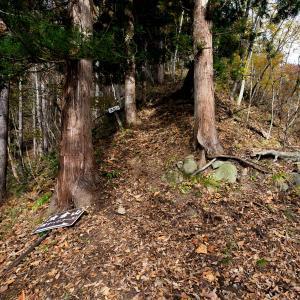 晩秋の虫倉山 急登と鎖場の連続する難ルート