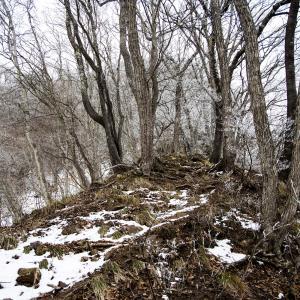 虫倉山冬季 一月の鎖場を登る