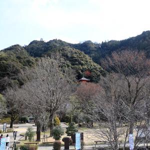 信長が治めた岐阜の象徴的な名城 - 金華山