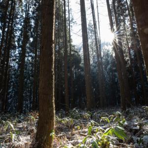 妙徳山 登山 須坂の里山バリエーションハイキング