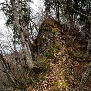 荒倉山登山 落葉と細尾根が続く鬼女紅葉伝説の山
