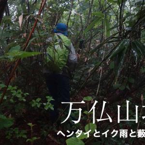 雨の万仏山塊藪漕ぎ縦走