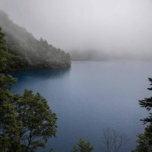 雨の志賀高原ハイキング 樹林帯のレイニーハイク