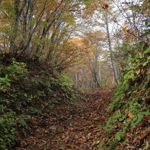 一夜山 登山 紅葉最盛期の戸隠連峰