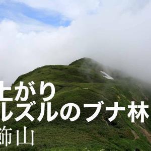 雨上がりに登る雨飾山