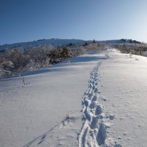 根子岳冬季登山 柔らかな雪の登山道を歩く