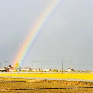 虹を見て思ったこと☆