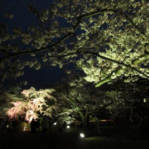 今日の空 ver.2017.04.06 この日 栗林公園の夜桜も・・・