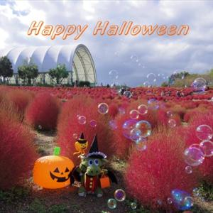 Happy Halloween(*^_^*)