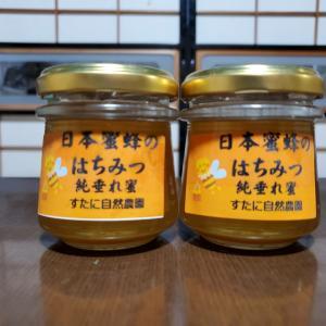 日本蜜蜂の蜂蜜