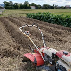 畑の耕運と畝たて