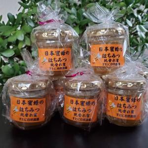 日本みつばちのハチミツを販売