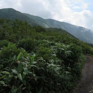 真っ白けっけだった仙ノ倉山・1:平標山の7合目〜9合目はキライです