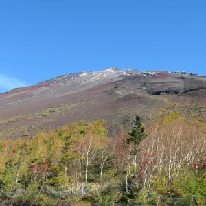 3回目の棚ぼたドライブ:毎度の富士山から今回は海っぺりまで