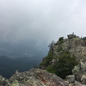 5ヶ月振りのリハビリは笠取山となぜか御座山・4:山頂は真っ白下界は真夏