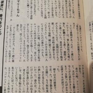 【9月第2週のハイ&ロー】台風15号、林真理子さんの愛犬マリーちゃん