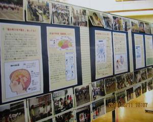 「脳科学と教育」研究発表の記録