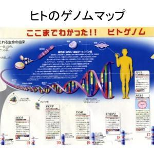 DNAについて