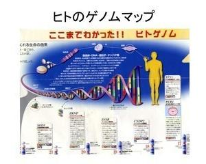 DNAの姿