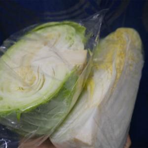 キャベツと白菜