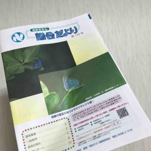 小笠原航空路のために現在東京都が検討している機体は2機種