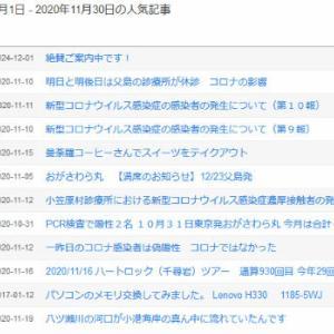 当ブログの11月の人気記事ランキング