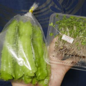 小笠原産四角豆と小笠原産ブロッコリースプラウト