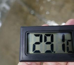 検温くん 29.1℃ 父島の水温