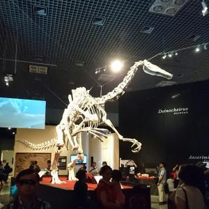 恐竜博 2019