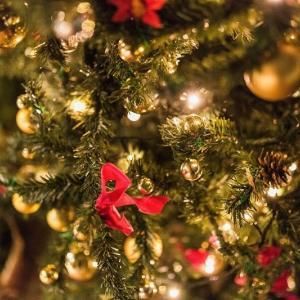 今年のクリスマス。