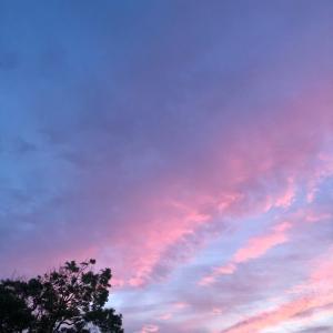 夕日を見て、、!